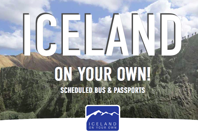 Iceland Bus