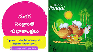 Image contains sugar cane, wheat crop,banana leaf, sun,deacarated bull,Pongal pots and puja iteams