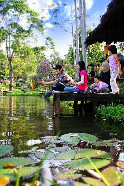 Fishing Pond
