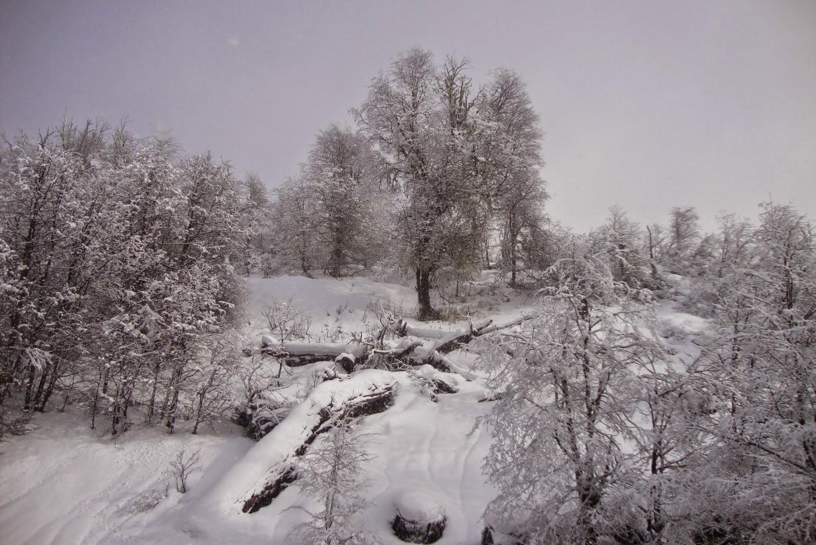 Piedras Blancas, Bariloche - AR
