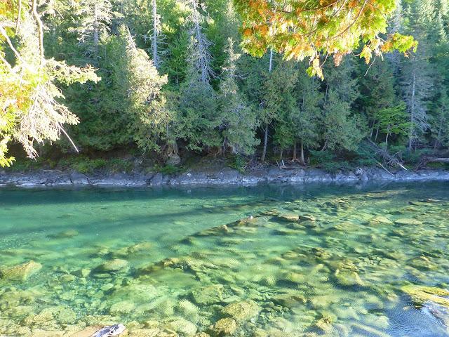 Grand Black, Bonaventure River