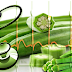 Powerful Health Benefits of OKRA! One of the Best Nutritious Vegetables!