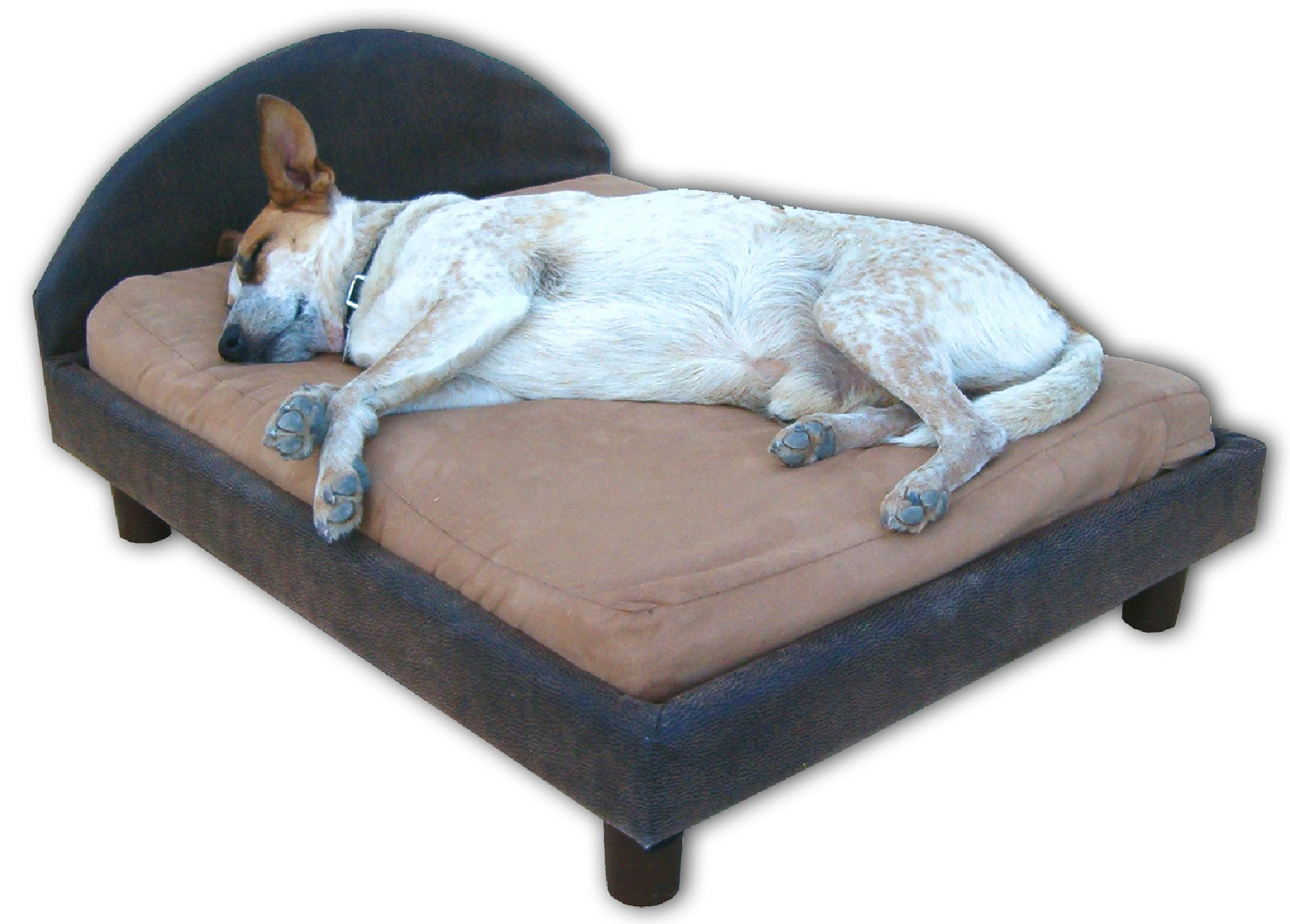 dogbeds: outdoor dog bed