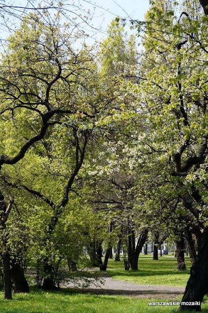 Warszawa Warsaw teren zielony Wola park rzeźba