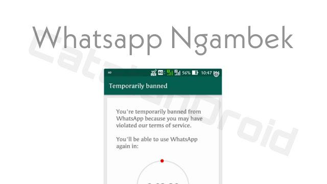 Whatsapp Mulai Blokir Beberapa Penggunanya, Ini Sebabnya