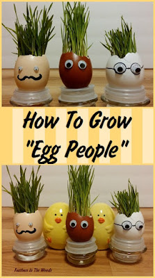 eggshell craft