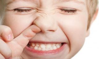 Giúp bạn tránh xa các bệnh về mũi