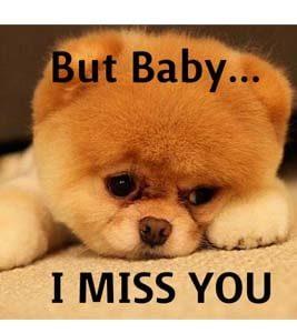 i miss you meme  25