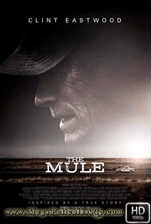 La Mula [1080p] [Latino-Ingles] [MEGA]
