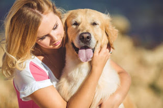 Dogs Provide Visible Love