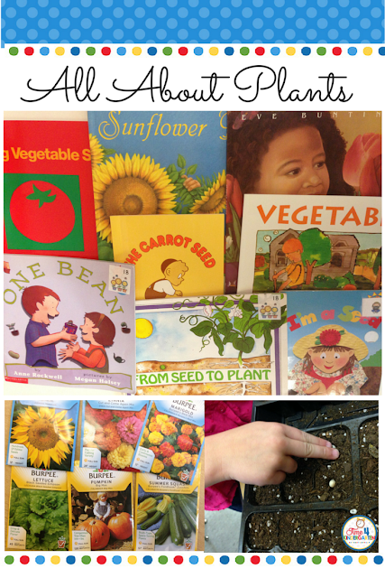 All About Plants, parts of a plant, what plants need and what plants give us.  Every thing you need to teach about plants is in this blog post from Time4kindergarten.com