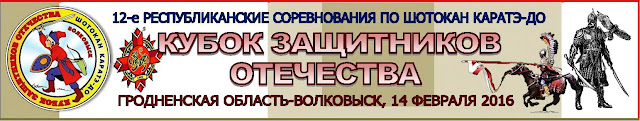 Кубок защитников Отечества
