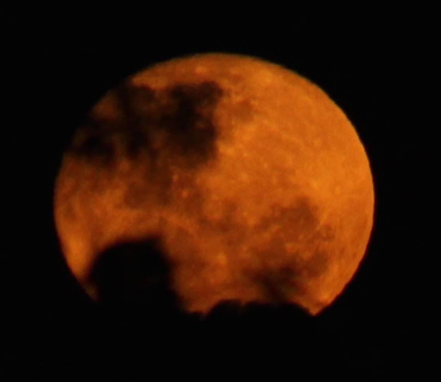 red moon today australia - photo #1