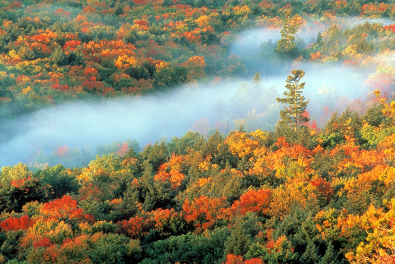 Porcupine Mountains Wilderness State Park Launches New