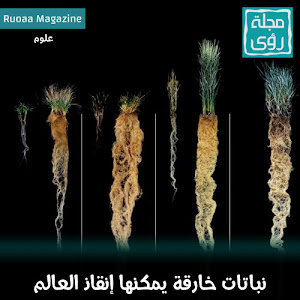 نباتات خارقة يمكنها إنقاذ العالم !