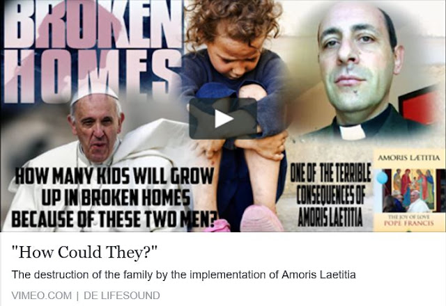 Secta Bergogliana,  destruye la Familia y los sacramentos.