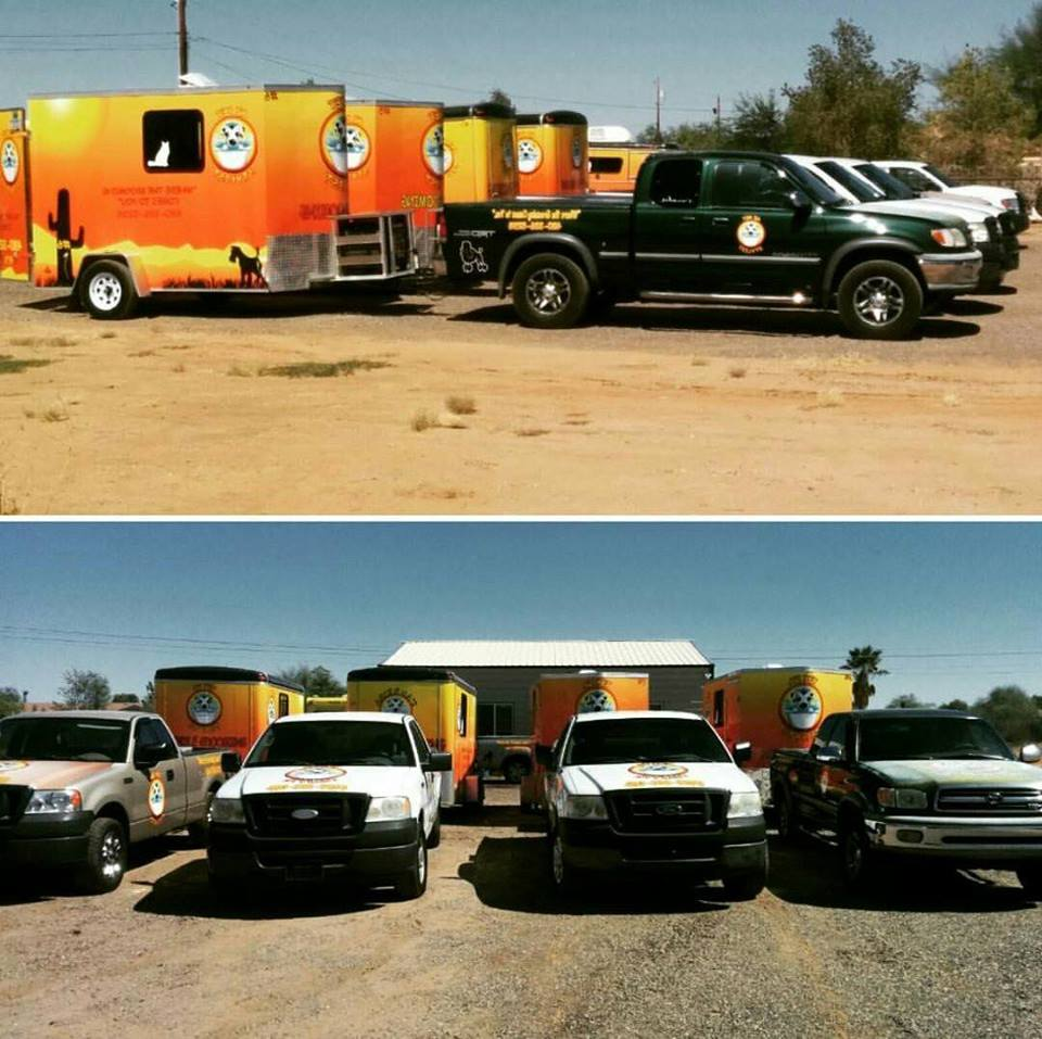Az pet stylist inc we provide mobile cat dog grooming solutioingenieria Image collections