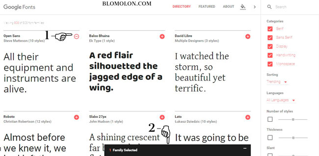 google-fonts-sitio