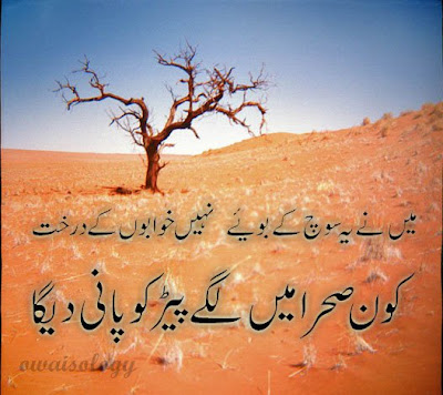 Main nay ye sooch k   Urdu Shairy   Urdu Ghazals   Fantasy ...