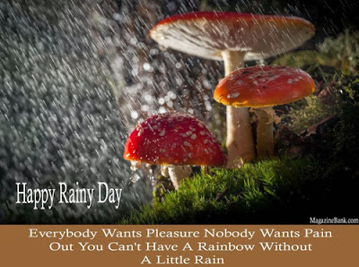 happy-quotes-for-a-rainy-day
