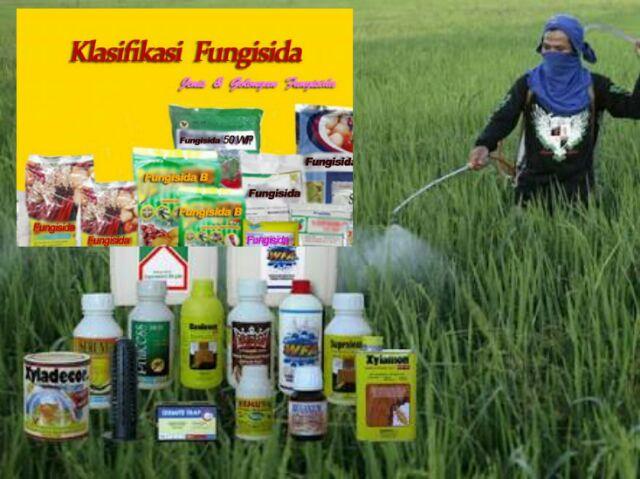 beda pestisida dan fungisida