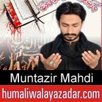 https://www.humaliwalayazadar.com/2017/01/muntazir-mehdi-nohay-2013-to-2018.html