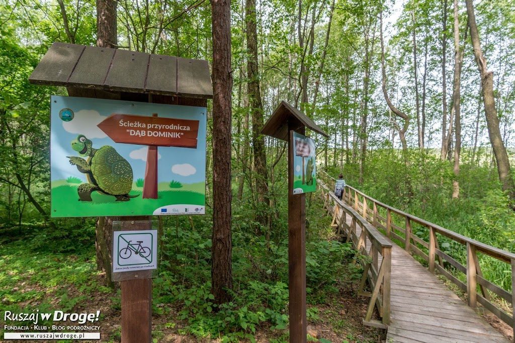 Kładka nad Jezioro Moszne