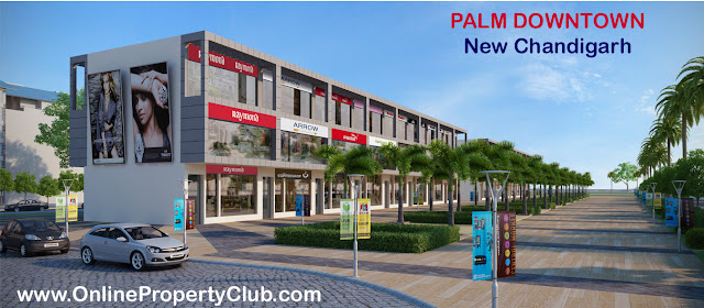 PALM DOWNTOWN - Mullanpur New Chandigarh