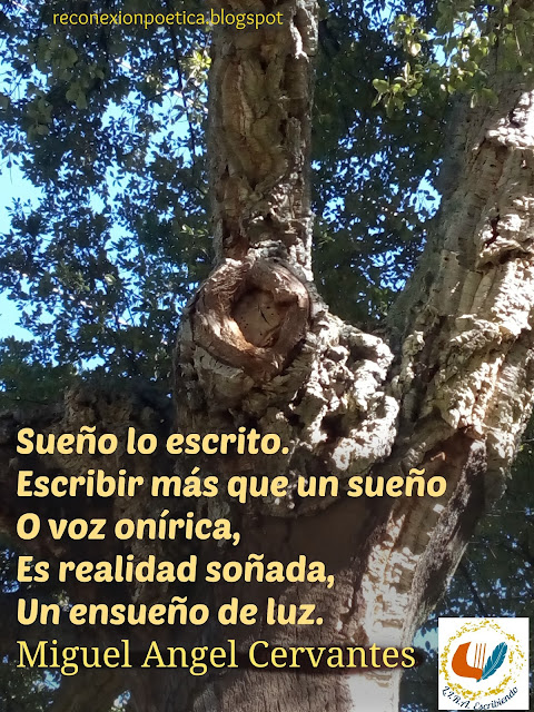 blogdeescritura-escritura-onirica-miguel-angel-cervantes