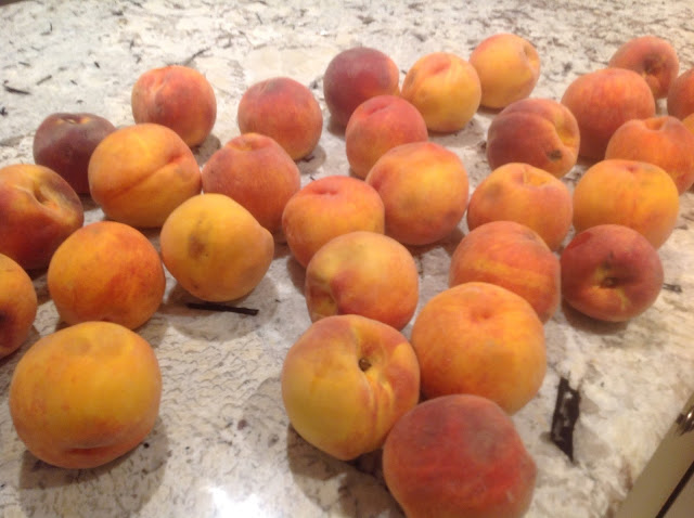 20 +  peaches on the counter