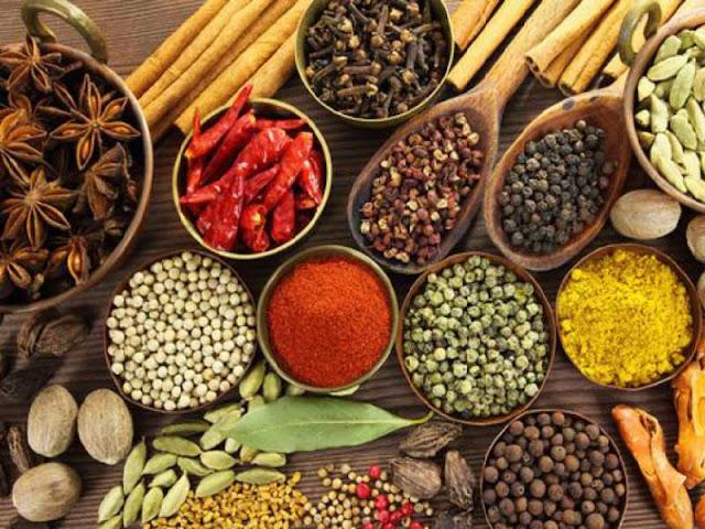 Usaha Obat-obatan Herbal
