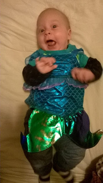 Alexander the baby merman 2014