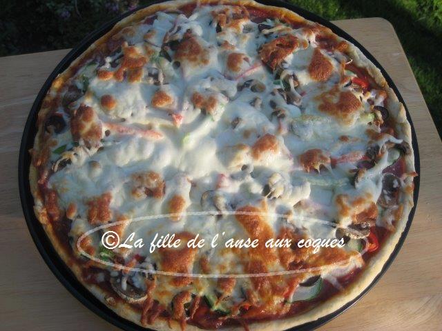 la fille de l anse aux coques p 194 te 192 pizza rapide sans levure