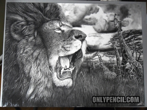 19-The-Lion-King-Lisandro-Peña-Animal-Drawings-with-Attention-to-Minute-Details-www-designstack-co