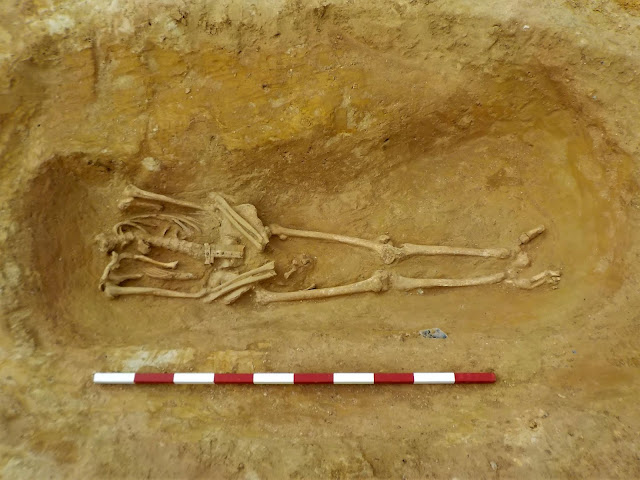 Decapitated skeletons found at Roman cemetery dig in Suffolk