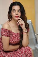 Diksha Panth in a Deep neck Short dress at Maya Mall pre release function ~ Celebrities Exclusive Galleries 001.JPG