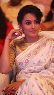 Actress Anita Hassanandani Pictures in Saree at Manalo Okkadu Audio Launch  0015.jpg