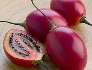 Top Of 10 Benefits of Tamarillo Skin for Health - Healthy T1ps