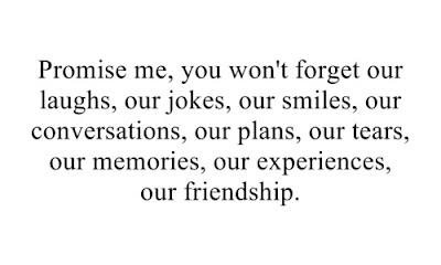 Quotes about friends:Promise me, you won't forget our laughs, our jokes, our smiles, our conversations, our experiences, and our friendship.