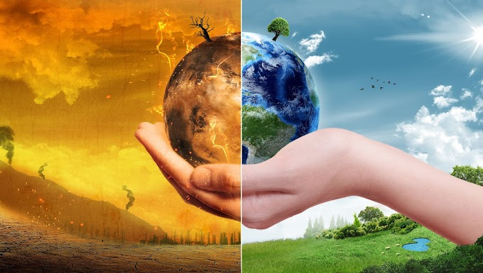 Essay on Global Warming for students (1200 words) - IndiaEssays.in