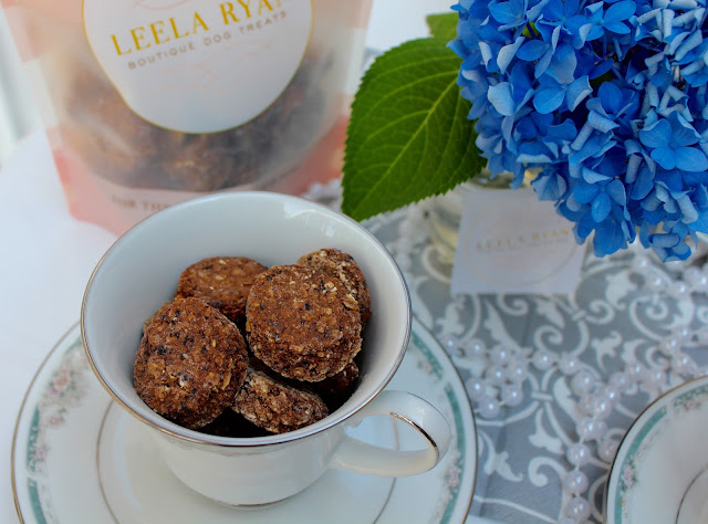 Leela Ryan Wild Berry Scone Organic Dog Treats Giveaway