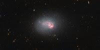 Dwarf Galaxy ESO 553-46