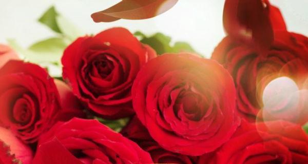 7 thủ thuật để làm đẹp từ hoa hồng hiệu quả