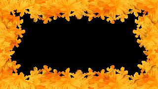 5 Moldura flor amarela png