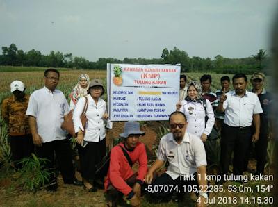 Entaskan Kemiskinan dan Penanggulangan Stunting dengan Pengembangan Kawasan Mandiri Pangan (KMP)