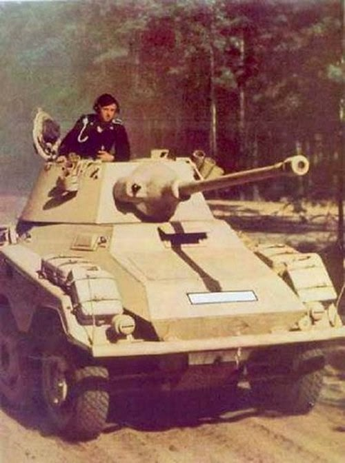 Late War German Artillery And Vehicles Pictures 6