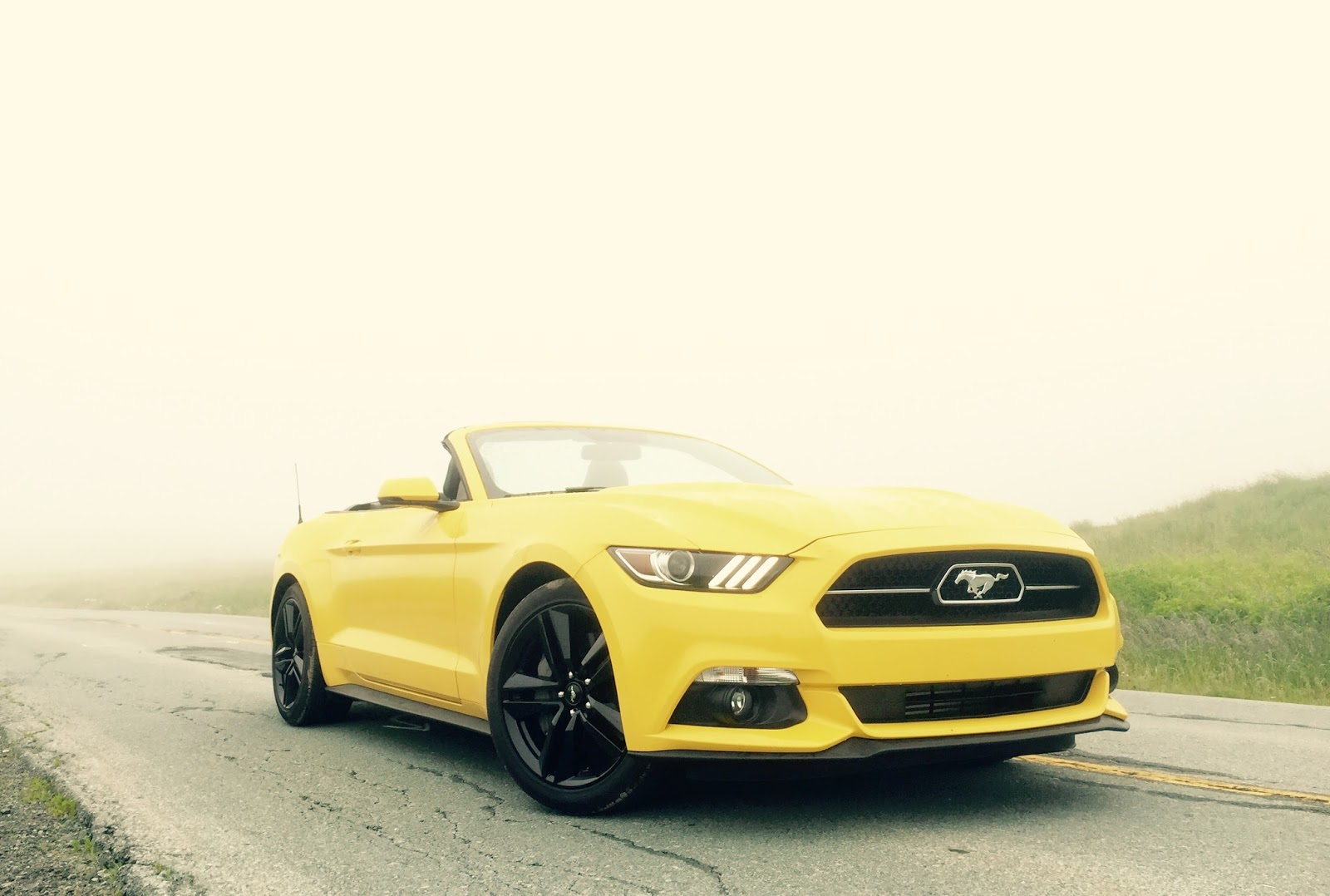 2015 Ford Mustang Ecoboost Convertible Review Great Car With This Yellow Front