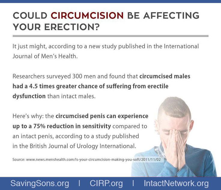 Erect circumsised penis