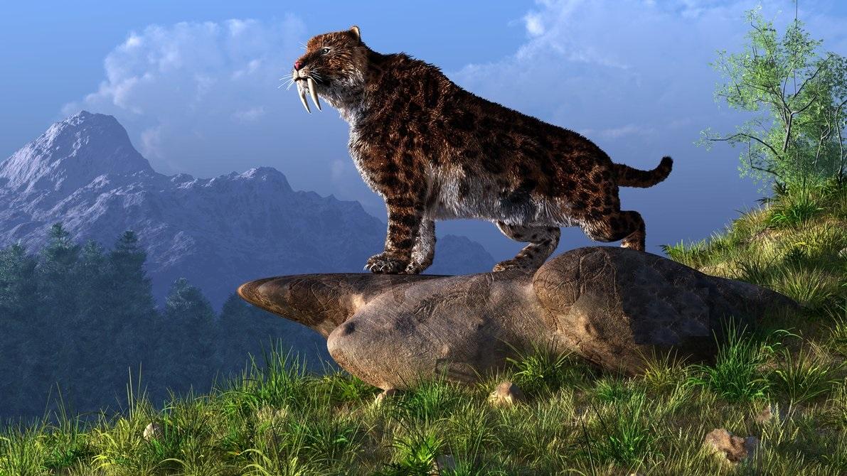 Tigre Dientes De Sable, Lo Que No Sabías Sobre El Smilodon ! ~ Una ...