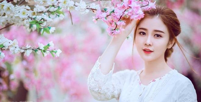 Ý nghĩa của hoa đào và hoa mai với 2 vùng miền đất nước